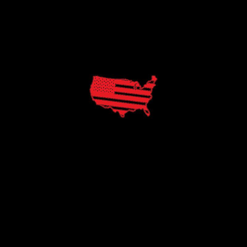 Freedom of Speech in America Logo